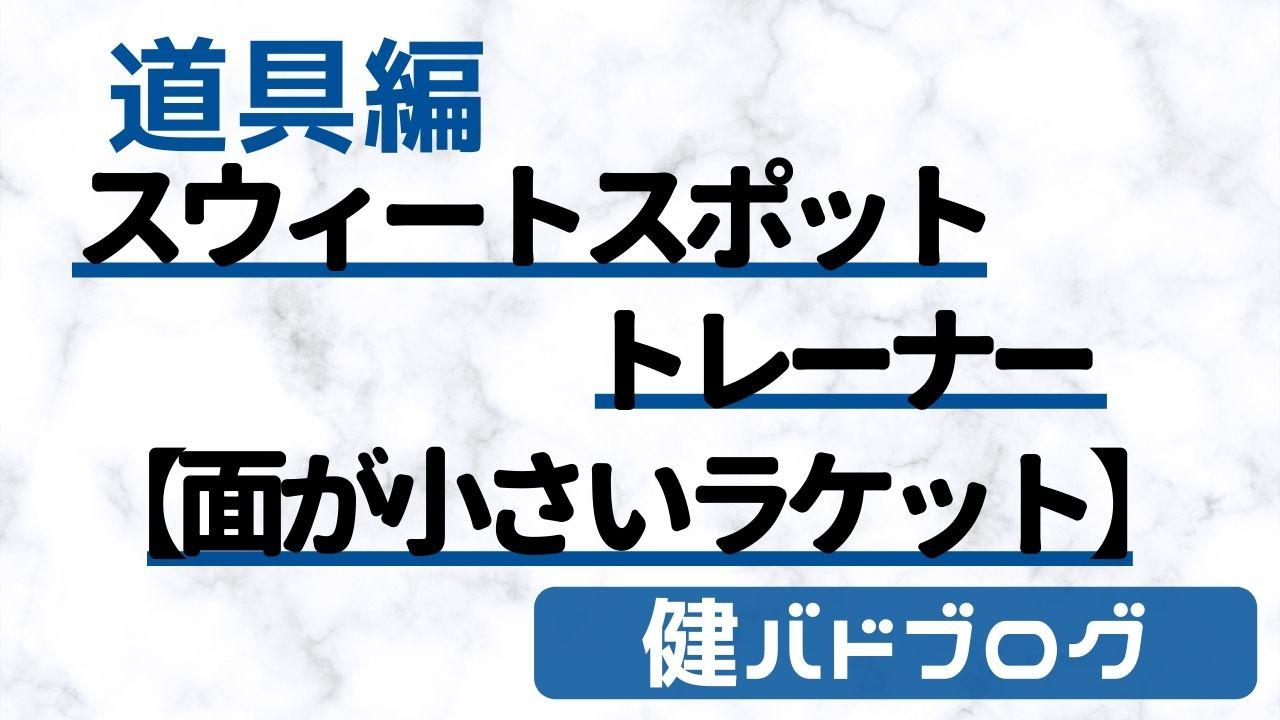 スウィートスポットトレーナートレーニングラケット【ブラックナイト】